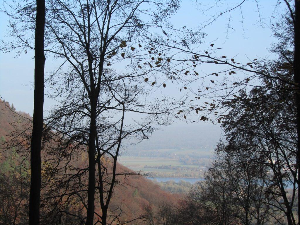 20 Brunsbergwanderungen 10
