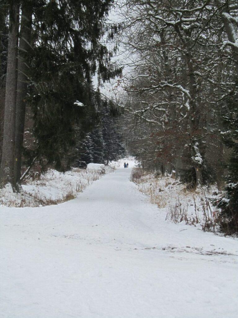 21 Mühlenberg 48