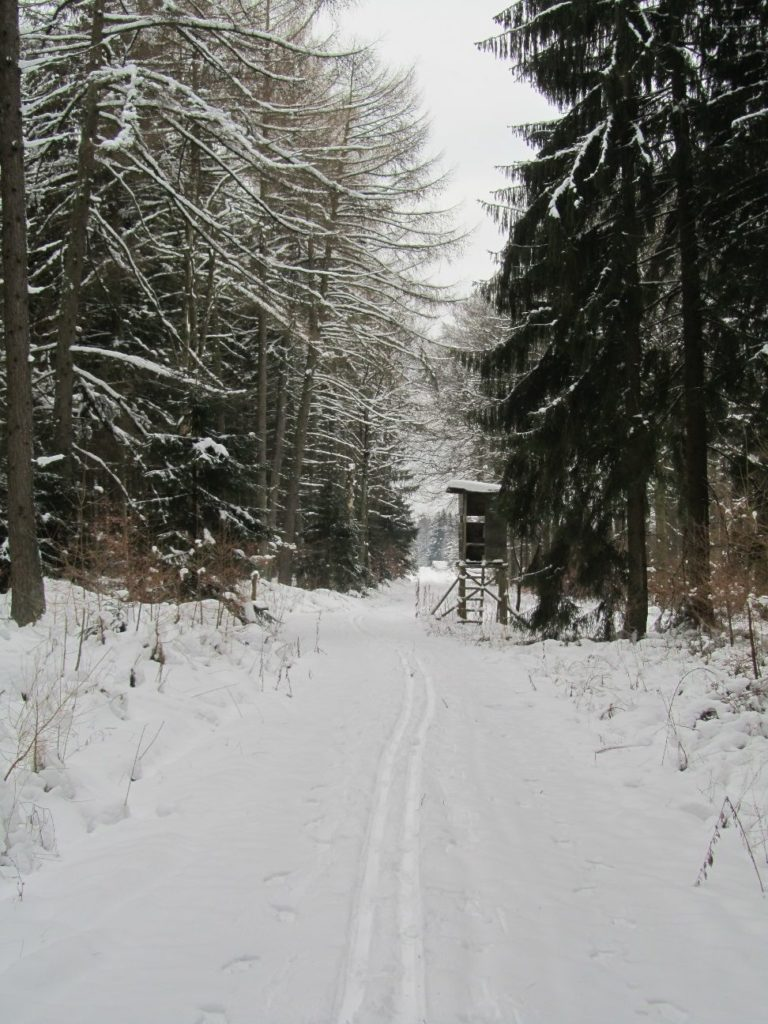 21 Mühlenberg 55